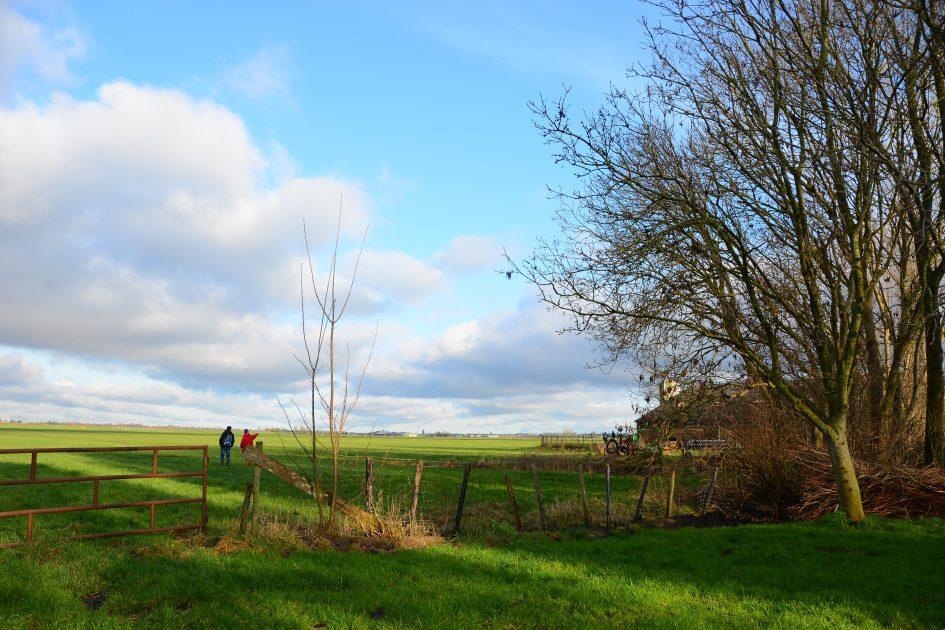 Herenboerderij Leimuiden blik over het perceel