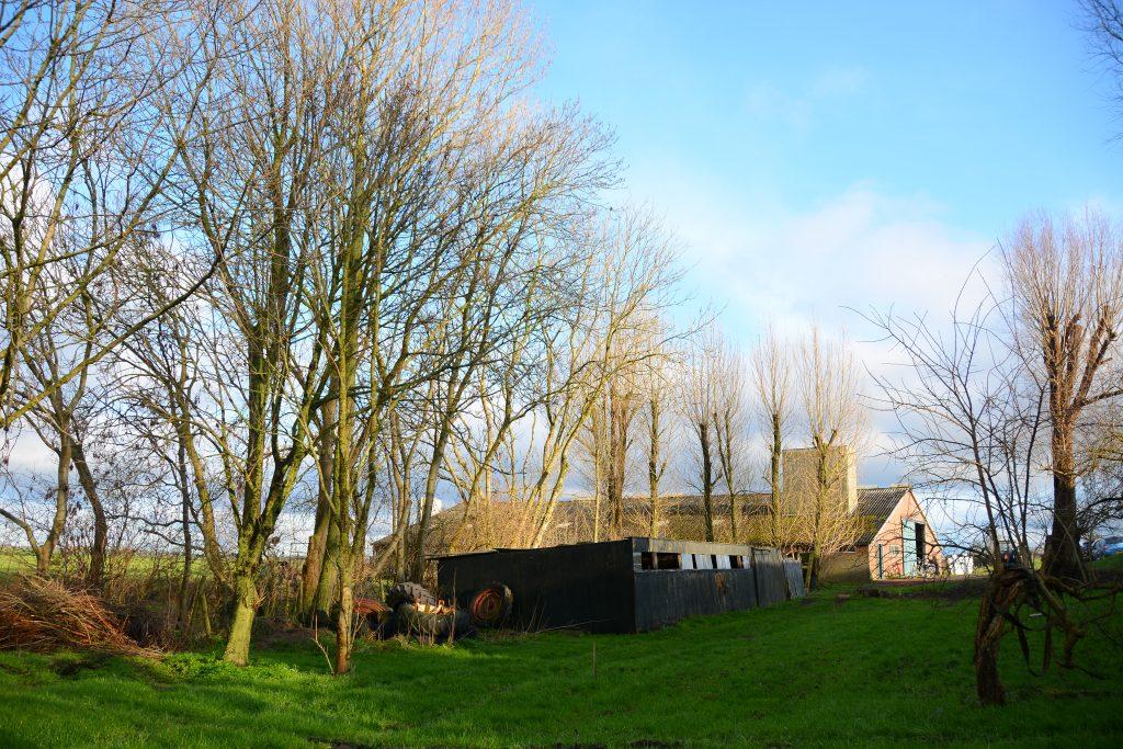 Herenboerderij Leimuiden blik op stal en kippenschuur